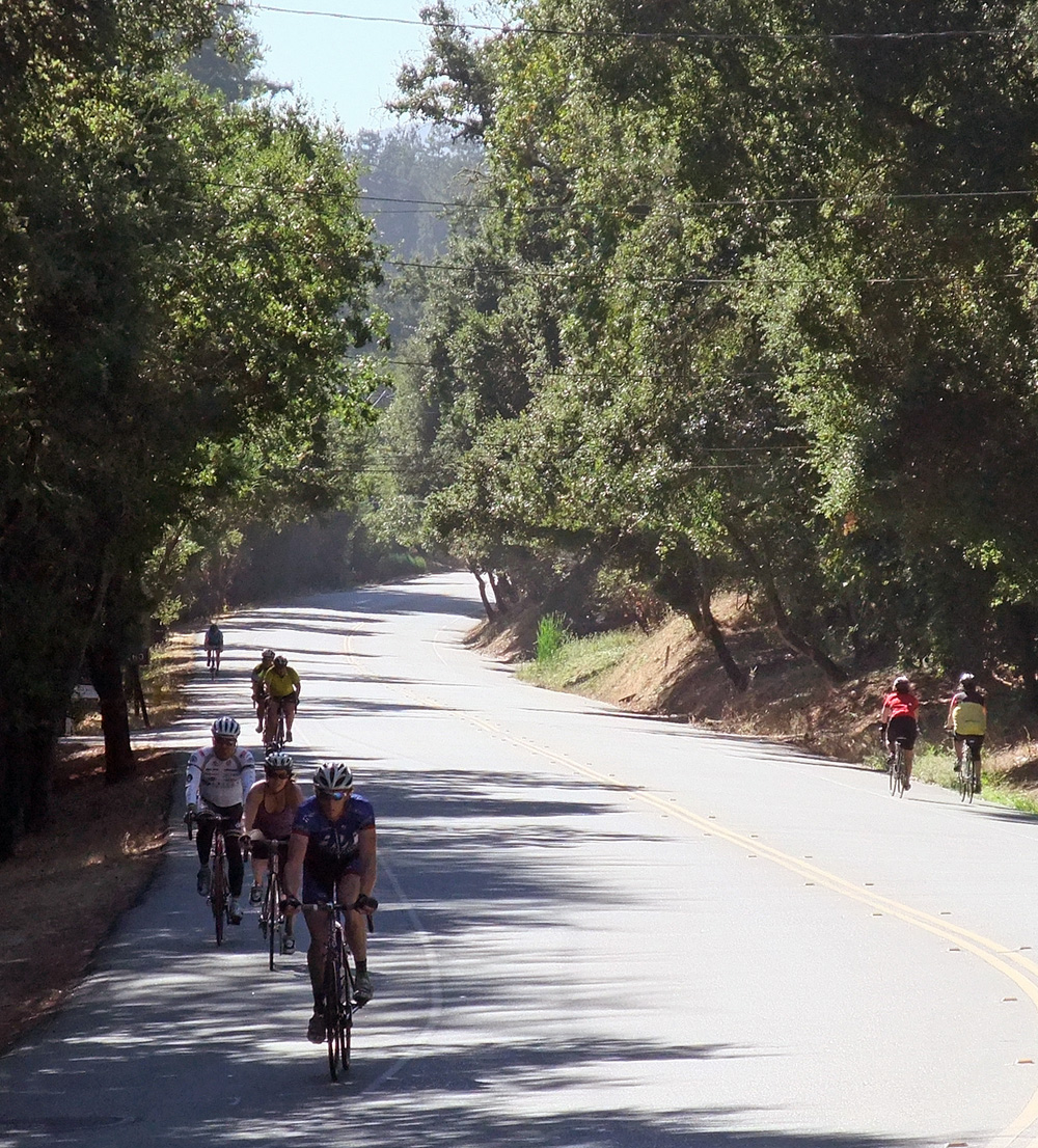 "Cyclists on Portola Road, part of ""The Loop"""