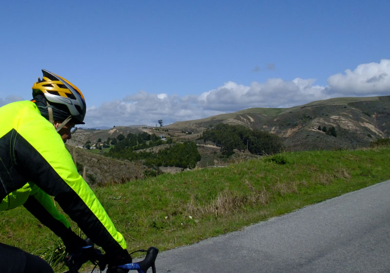 The view on Stage Road, looking back towards San Gregorio