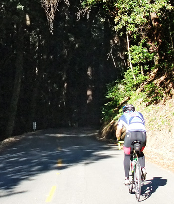 Kevin entering the final part of the Kings Climb, just under 1k to go