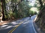 Bikes up, bikes down on Kings Mtn