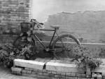 IMG_0272_bike_bw