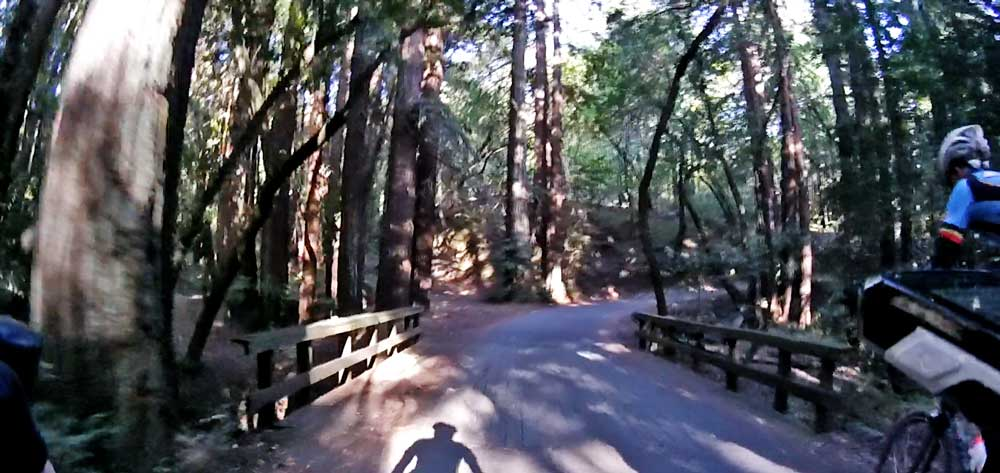 "How many times have I ridden over this bridge, on the ""through the park"" version of climbing Kings, and not recognized its importance as a ""Bridge of Death?"""