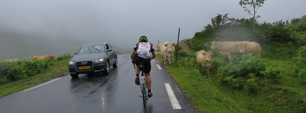 Nearing the top of the Col du Soulor you're sharing the road with cows, sheep, cars, rain, wind, cold...