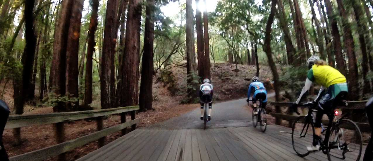 """Does Kings Mtn have its own Bridge of Death? Only if you head up through Greer and Huddart Park. Kings isn't really steep enough to earn a """"Bridge of Death"""", unless you ride it hard enough."""