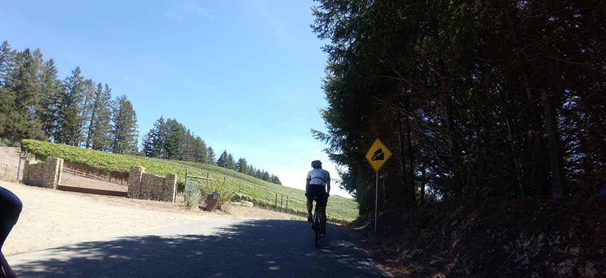 """When you see the hillside slipping away, you get the feeling this """"steep grade"""" sign is for real. It is."""